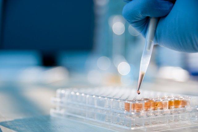 анализы на аллергены инвитро хабаровск